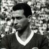 Vicente Arenari Filho